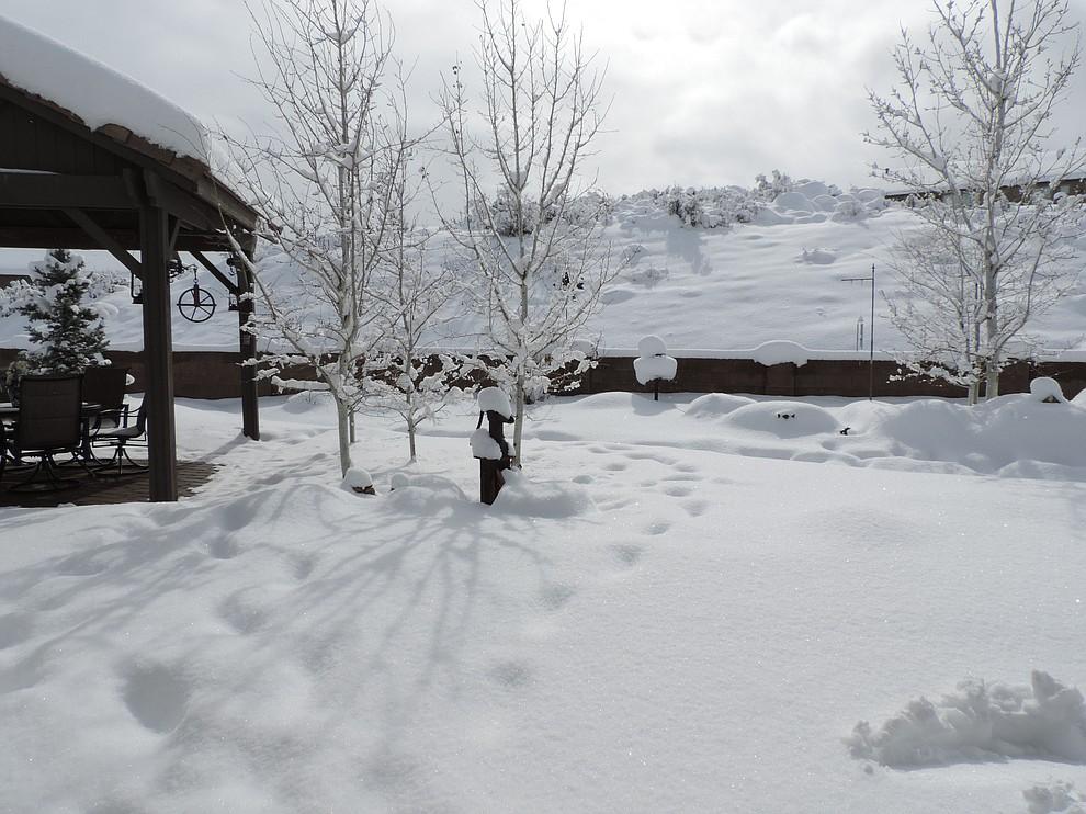 2019 Snowstorm
