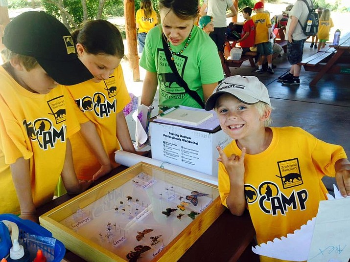 Campers learn about butterflies during a 2018 zoo camp at Heritage Park Zoological Sanctuary. (Ron Brashear/Courtesy)