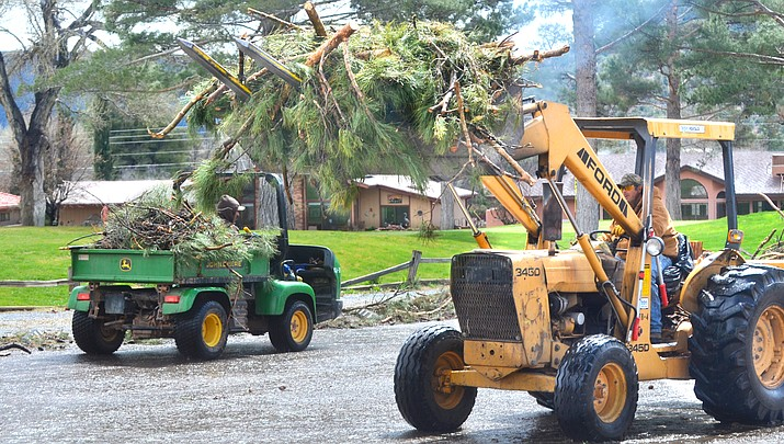 Storm damages 1,000 trees at VOC's Oakcreek Country Club golf course