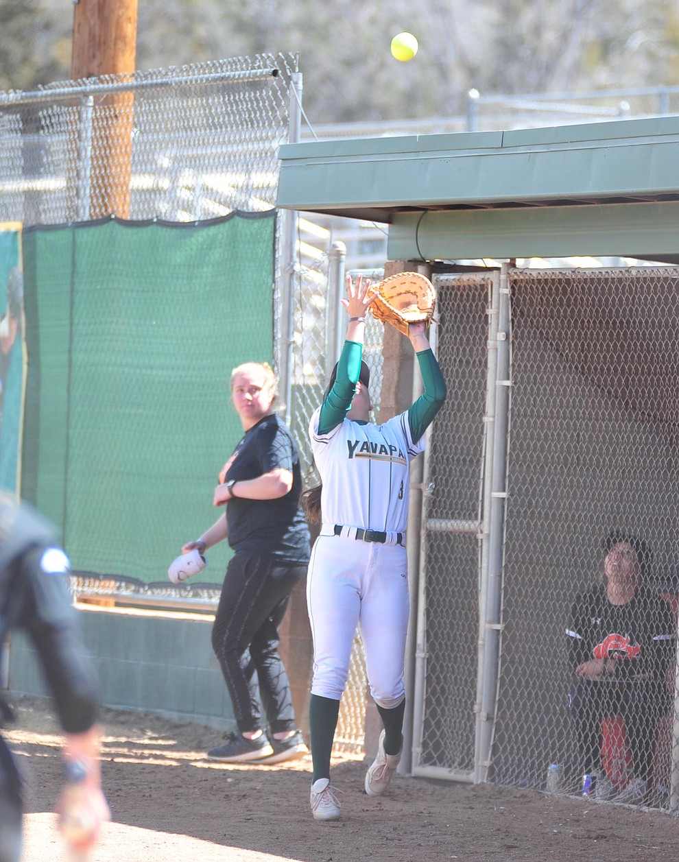 Yavapai's Jessica Giacoma makes the catch at the dugout fence as the Roughriders take on the Chandler Gilbert Coyotes Tuesday, March 19, 2018 in Prescott.