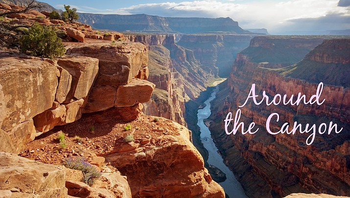Around the Canyon: Week of June 19
