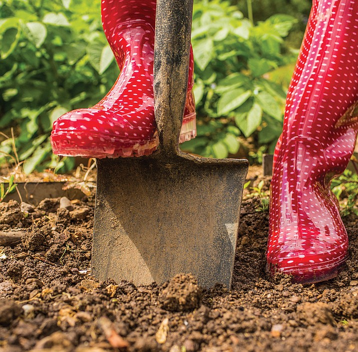 Begin preparing garden bed soil early for new plants. (MetroCreative Services)