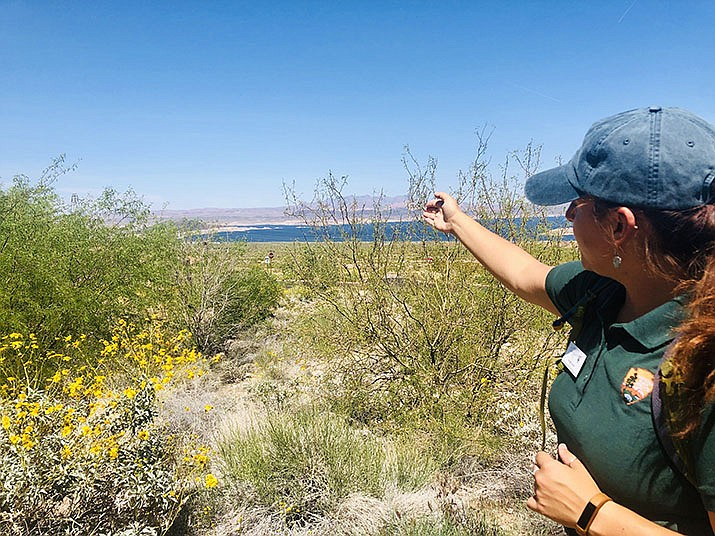 Lake Mead is more than a beautiful lake over the hill. Ranger Amanda Royal is talking about the adventures the park has to offer. (Photo by Agata Popeda/Daily Miner)