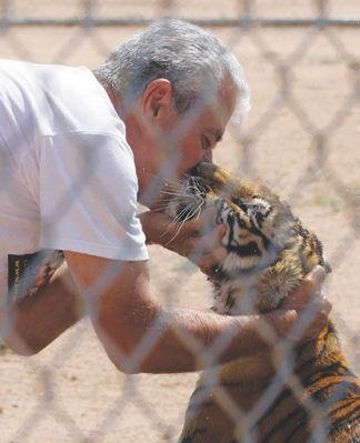 'Big Cat' mauls owner of Keepers of the Wild animal park near Kingman