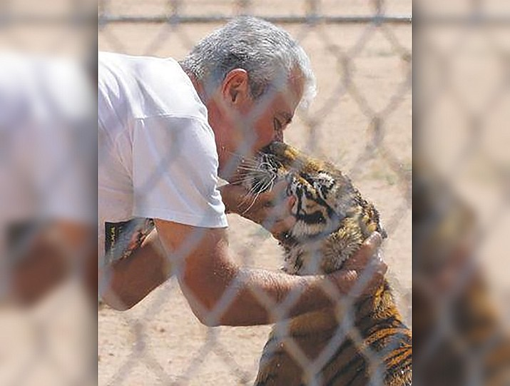 Jonathan Kraft, founder and director of Keepers of the Wild, greets a rescued tiger cub in 2014. Most people are not allowed to get this close but Kraft knows the animals very well. (Courtesy photo)