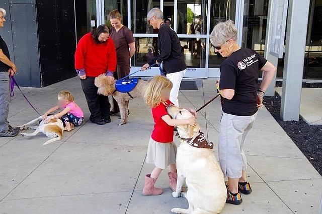 The Pet Partner teams are greeted by excited children and others as they wait to enter the Prescott Valley City Council Meeting to receive their proclamation. (Courtesy)