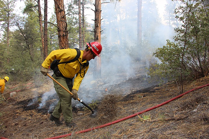 Wildland firefighters cut a fireline around a practice burn during the annual Basin Operation Drill on Thursday, April 4, 2019. Dangerous wildfire conditions exist across Arizona's Sonoran Desert because abundant dried grasses stemming from heavy winter rain have made some areas especially susceptible to fast-moving blazes, state fire officials said. (Max Efrein/Courier, file)