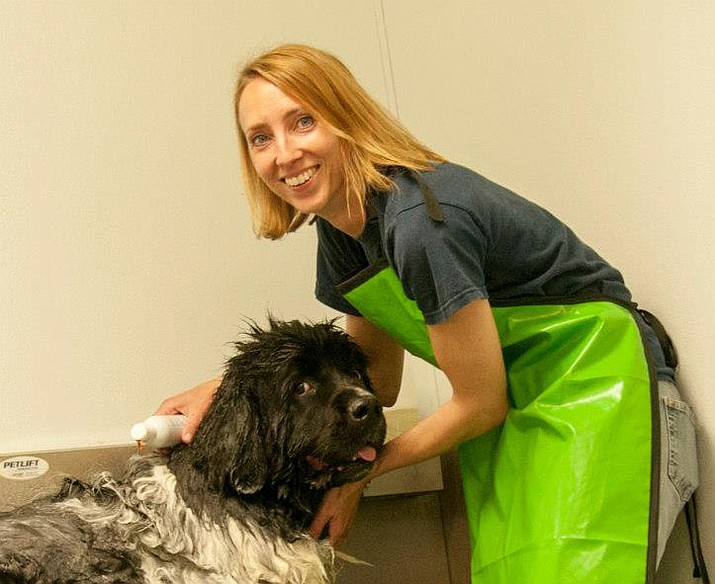 Dog wash 2018 Murphy and Joellyn (Courtesy)