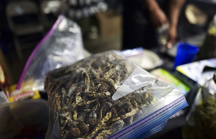 "A vendor bags psilocybin mushrooms at a pop-up cannabis market in Los Angeles on Monday, May 6, 2019. Voters decide this week whether Denver will become the first U.S. city to decriminalize the use of psilocybin, the psychedelic substance in ""magic mushrooms."" (Richard Vogel/AP)"