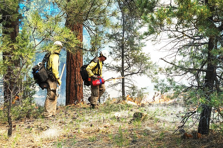 Beginning this week, Grand Canyon National Park fire managers will ignite prescribed fires along South Entrance Road to help reduce the park's fuel load. (Stock photo)