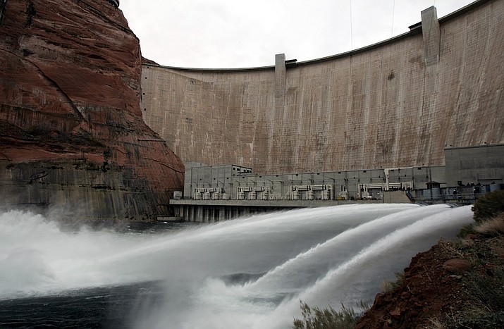 Researchers found that releasing low, steady flows of water from Glen Canyon Dam over the weekend gives the eggs that bugs lay on rocks, wood or cattails just below the water's surface a better chance of survival. (Laura Rausch/AP)