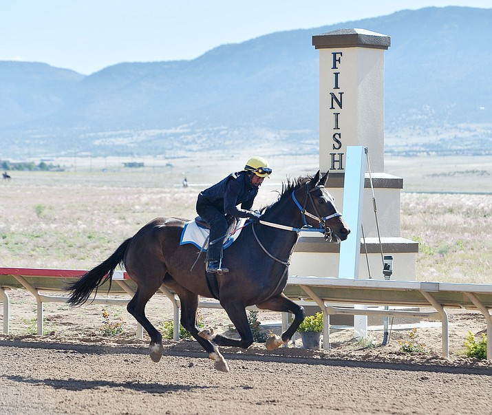 A rider exercises his horse as Arizona Downs prepares to reopen Tuesday, May 21. The racetrack will reopen, after 10 years, with live racing on weekends beginning Friday, May 24. (Les Stukenberg/Courier)