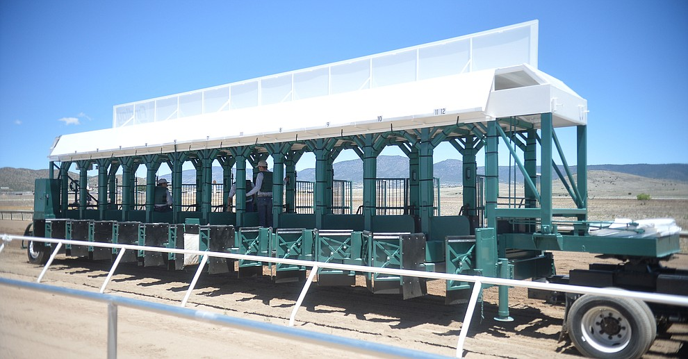 The starting gate moves into position at opening day of Arizona Downs Friday, May 24 in Prescott Valley. The racetrack reopens under new ownership after being closed for 10 years. (Les Stukenberg/Courier)