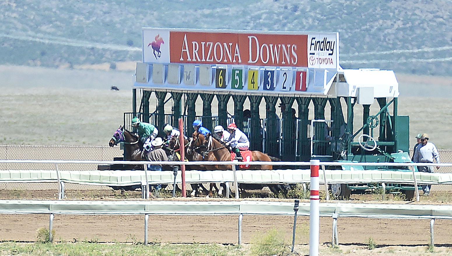 Horse racing returns to Arizona Downs