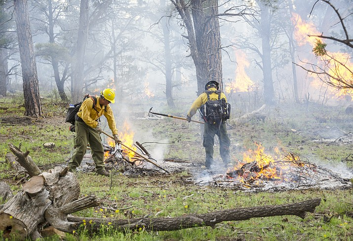 Grand Canyon National Park fire managers initiate prescribed pile burning May 30. (Mike Quinn/NPS)