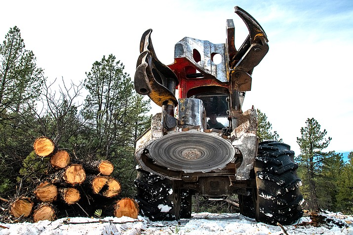 James Perkins, of Perkins Timber Harvesting, operates a feller buncher to remove trees on the Williams Ranger District's Isham Task Order, in December 2018. The Isham Task Order is part of the Four Forest Restoration Initiative. (Photo/Kaibab National Forest)