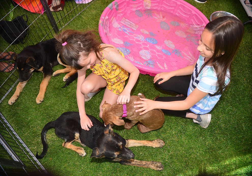 Sophia and Cienna play with puppies from Clarkdale's Pets Return Home Animal Rescue at Woofstock at the Civic Center in Prescott Valley Saturday, June 8, 2019. (Les Stukenberg/Courier)