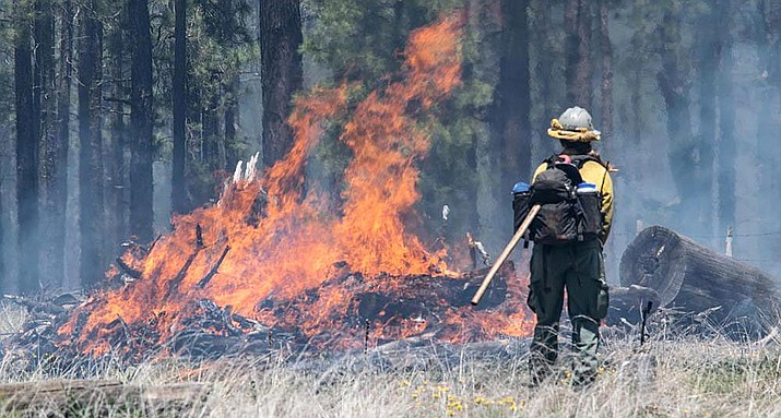 The Coldwater Fire has burned about 6,150 acres about four miles south of Clints Well. Photo courtesy US Forest Service