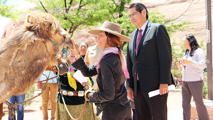 New York artist takes 30-day ride with camel and horse through Navajo Nation to the Grand Canyon in honor of women