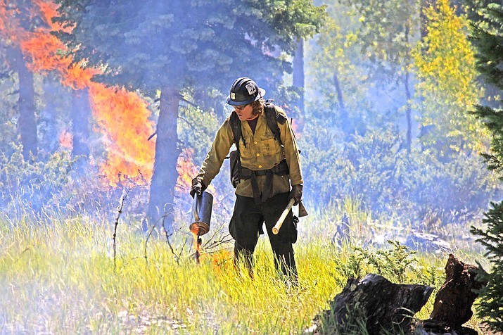 Kaibab National Forest will resume prescribed burn treatments on the Williams Ranger District this week. (USFS/photo)