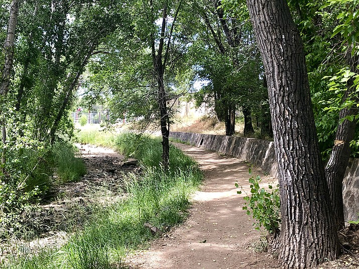 Looking up the Greenway Trail corridor between Aubrey and Carleton streets. (Cindy Barks/Courier)