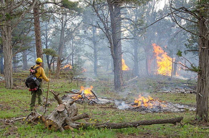 Prescribed burns are part of a strategic fire management plan at Grand Canyon National Park. (Photo/NPS)