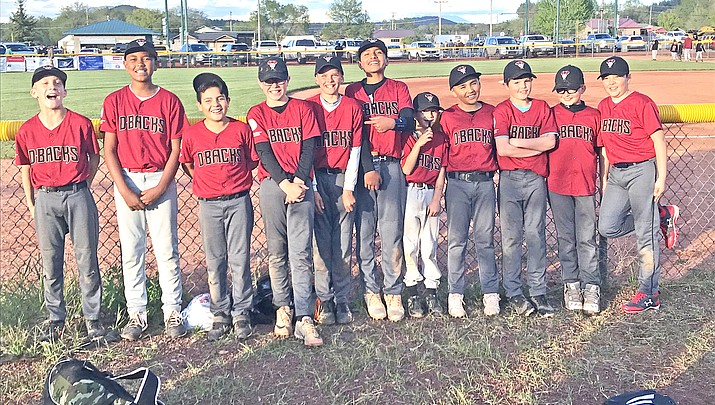 Astros and Scrappers claim Williams Little League city tournament titles