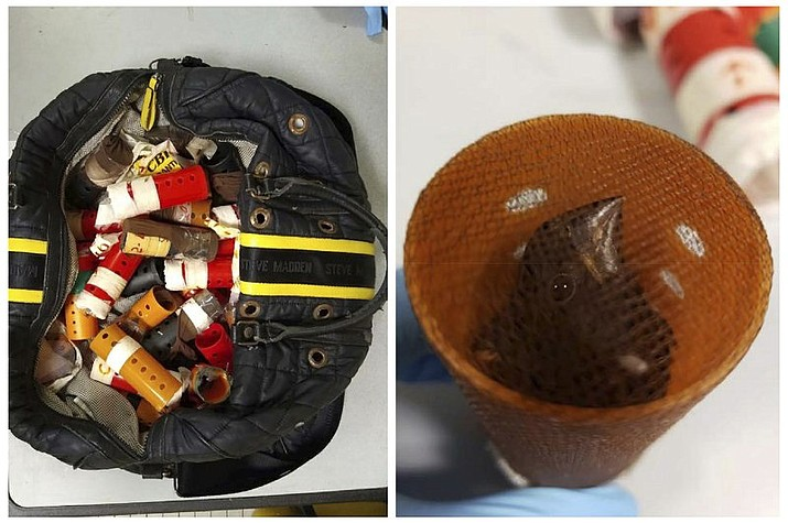 This combination of photos provided Sunday, June 16, 2019, by the U.S. Attorney's Office for the Eastern District of New York shows a bag containing hair curlers used to smuggle live finches into the United States from Guyana and a finch inside one of the rollers in New York. Federal authorities say a 39-year-old Connecticut man has been caught on Sunday trying to smuggle nearly three dozen live finches through John F. Kennedy Airport in order to sell them for singing competitions. (U.S. Attorney's Office for the Eastern District of New York via AP)