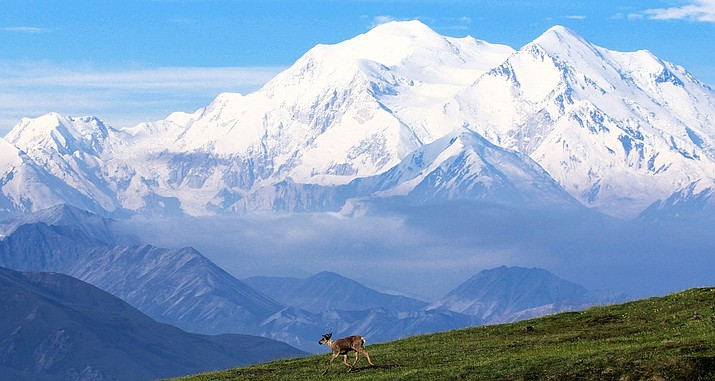 Denali National Park and Preserve. (Photo/NPS)