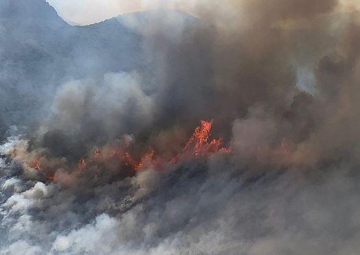 Homes near Phoenix evacuated due to wildfire