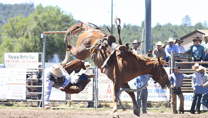 41st annual Cowpunchers  Reunion Rodeo returns to Williams