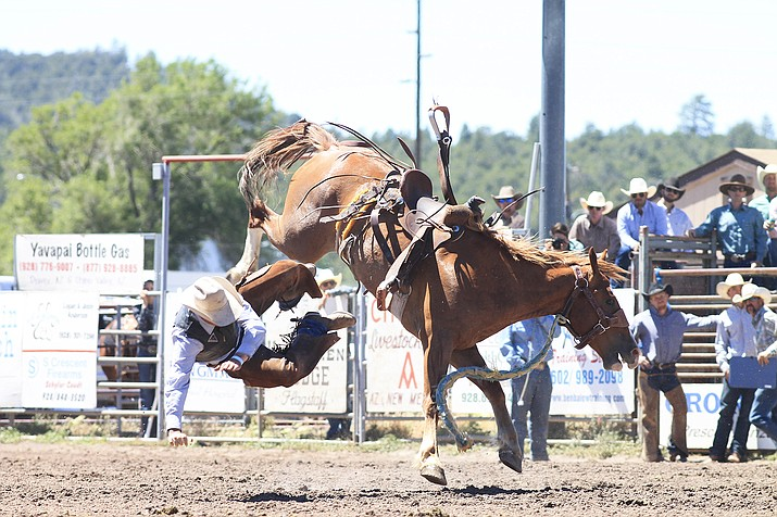 A cowboy flies through air after trying his hand at saddle bronc riding June 21 at the Cowpunchers Reunion Rodeo. (Loretta Yerian/WGCN)