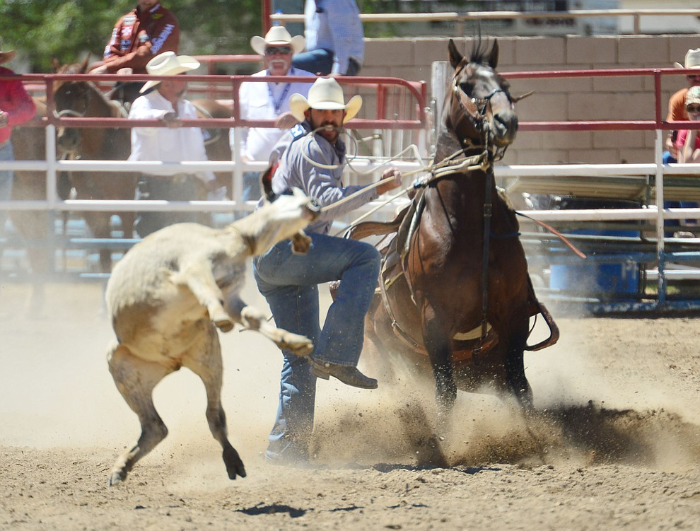 Cade Swor in the tie down roping during the fourth performance of the Prescott Frontier Days Rodeo Thursday July 4, 2019.  (Les Stukenberg/Courier)