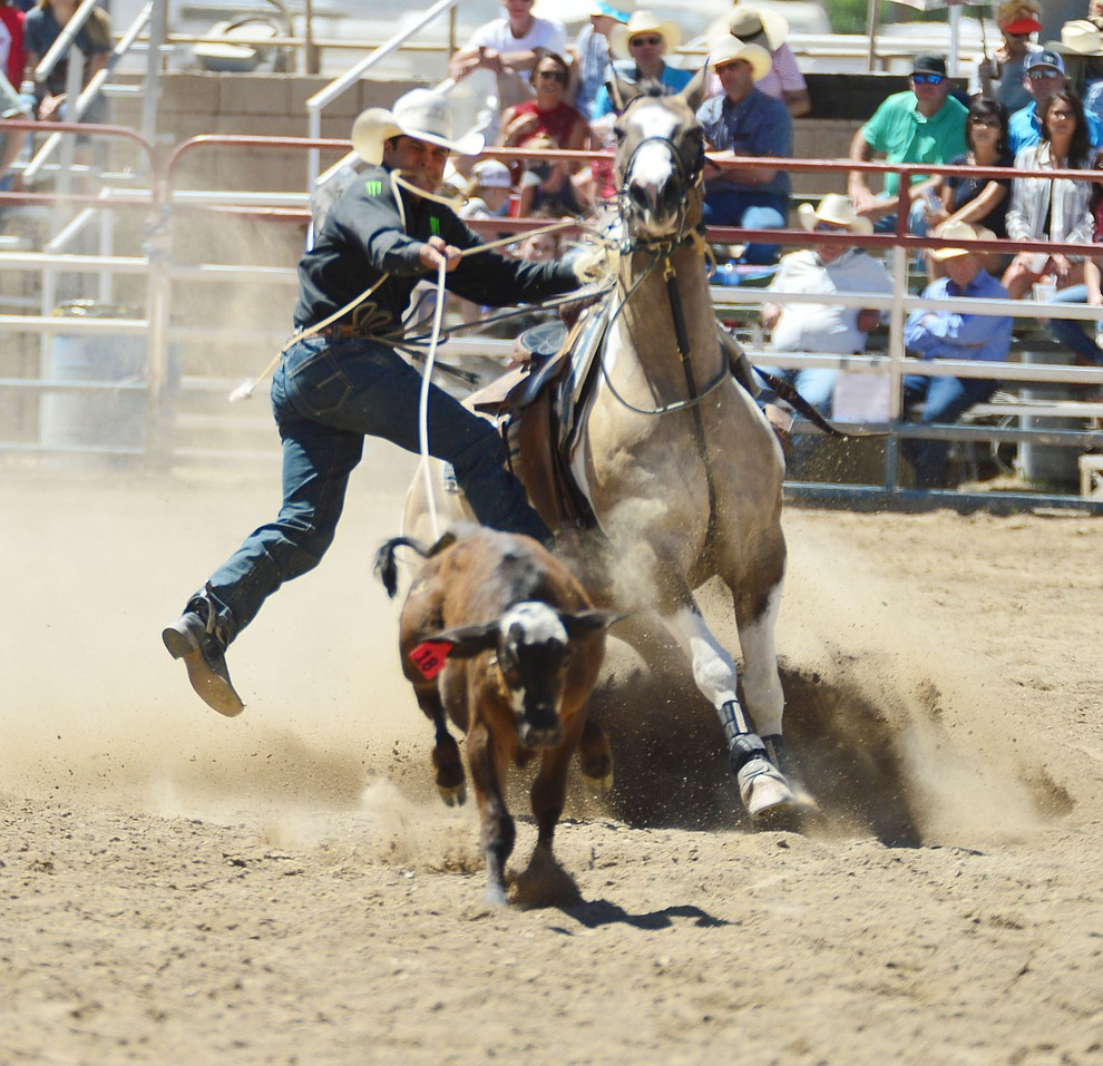 Kalai Nobriga in the tie down roping during the fourth performance of the Prescott Frontier Days Rodeo Thursday July 4, 2019.  (Les Stukenberg/Courier)