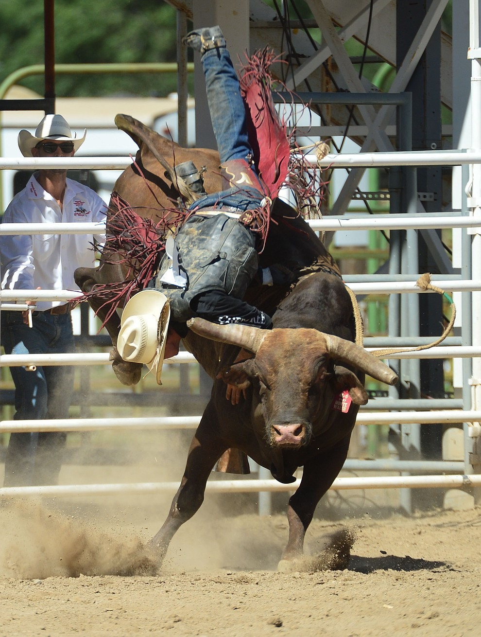 Clay Pannell goes up and off of Monte Walsh in the bull riding during the fourth performance of the Prescott Frontier Days Rodeo Thursday July 4, 2019.  (Les Stukenberg/Courier)