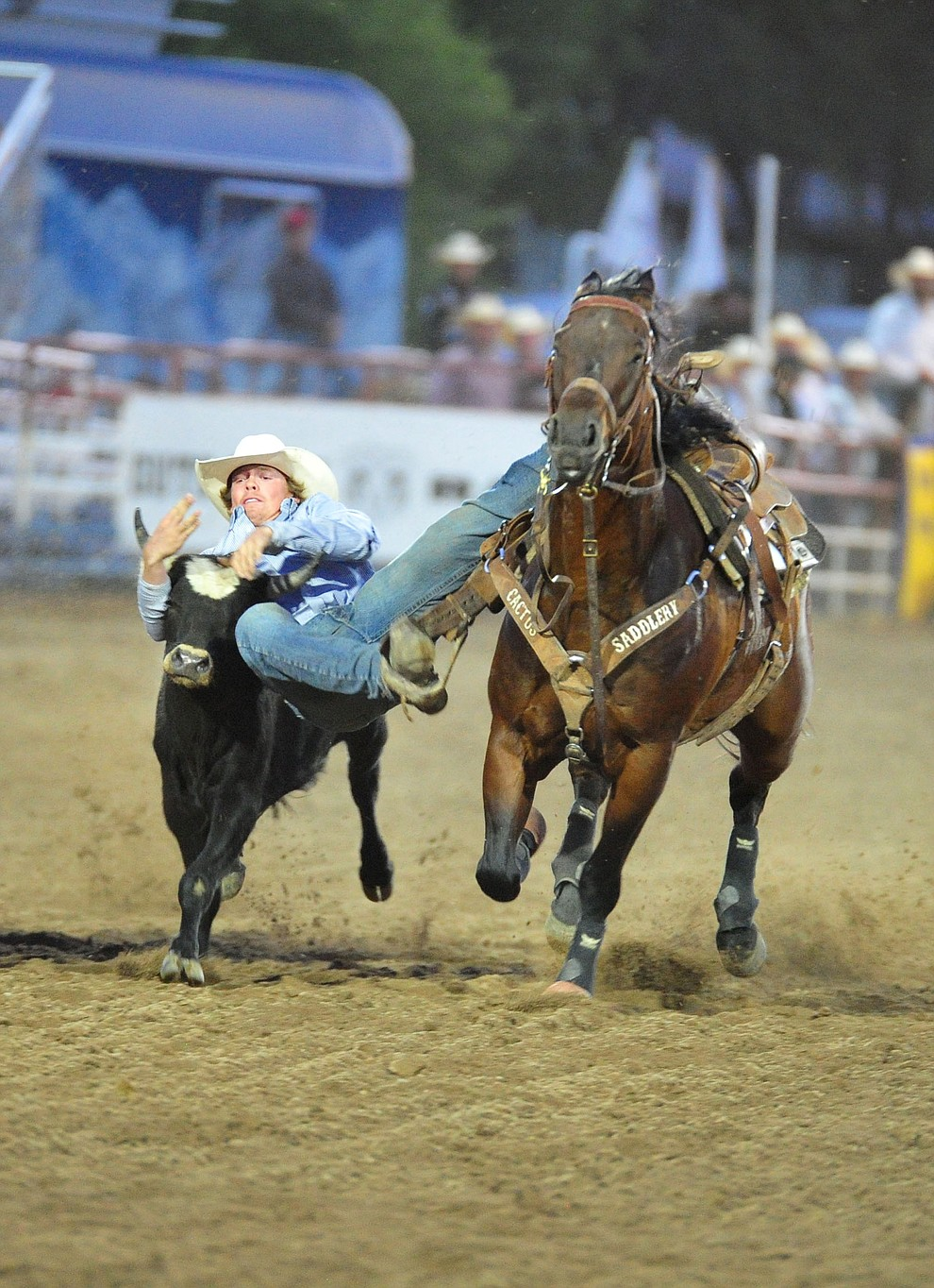 Tucker Allen has a 9.6 second run in the steer wrestling during the 5th performance of the Prescott Frontier Days Rodeo at the Prescott Rodeo grounds Friday July 5, 2019.  (Les Stukenberg/Courier)