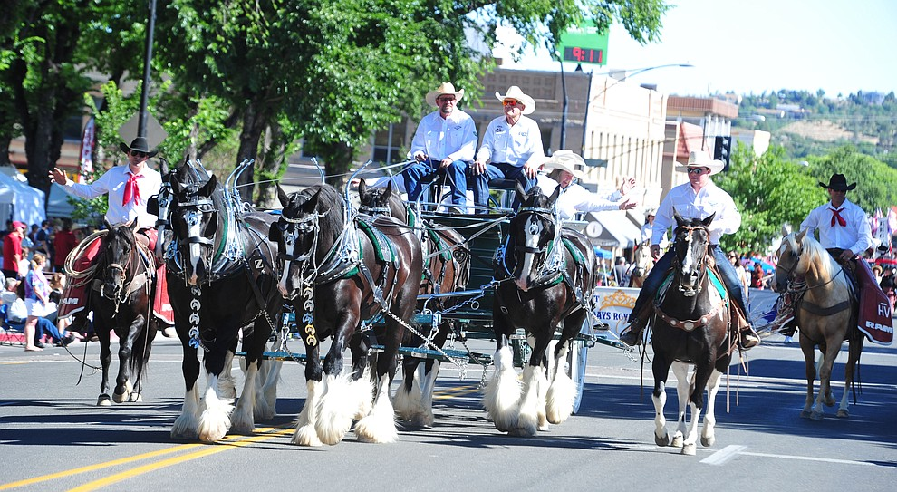 The Diamond Z English Shire horse team brings the Prescott Frontier Days Board of Directors during the Prescott Frontier Days Rodeo Parade through the streets of downtown Prescott Saturday July 6, 2019.  (Les Stukenberg/Courier)