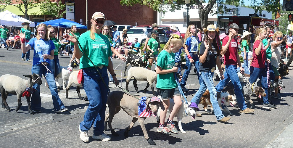 Prescott Frontier Days Rodeo Parade brought all kinds of animals through the streets of downtown Prescott Saturday July 6, 2019.  (Les Stukenberg/Courier)