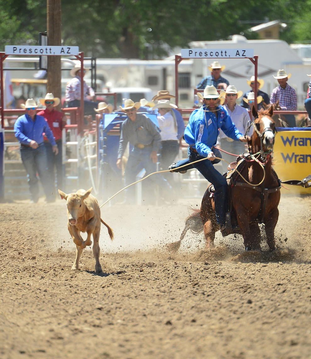 Adam Gray runs 10.6 in the tie down roping during the 6th performance of the Prescott Frontier Days Rodeo Saturday afternoon July 6, 2019.  (Les Stukenberg/Courier)