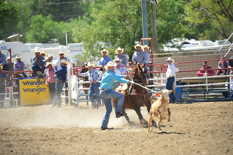 Joseph Parsons runs 10.4 seconds in the tie down roping during the 6th performance of the Prescott Frontier Days Rodeo Saturday afternoon July 6, 2019.  (Les Stukenberg/Courier)