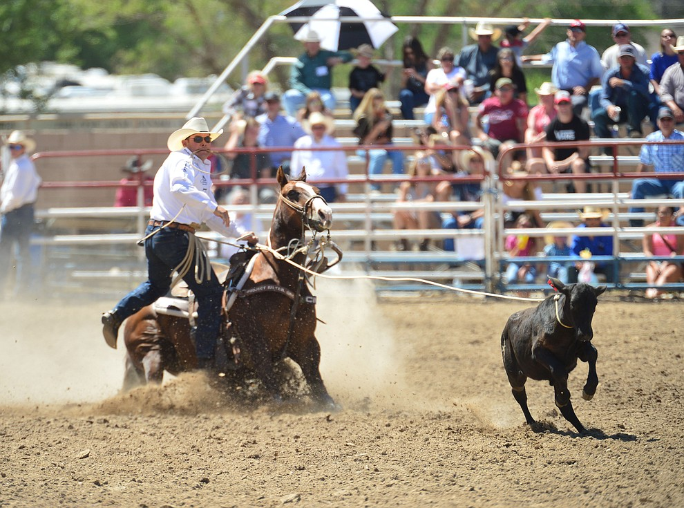 Matt Shiowaza runs 10.6 seconds in the tie down roping during the 6th performance of the Prescott Frontier Days Rodeo Saturday afternoon July 6, 2019.  (Les Stukenberg/Courier)
