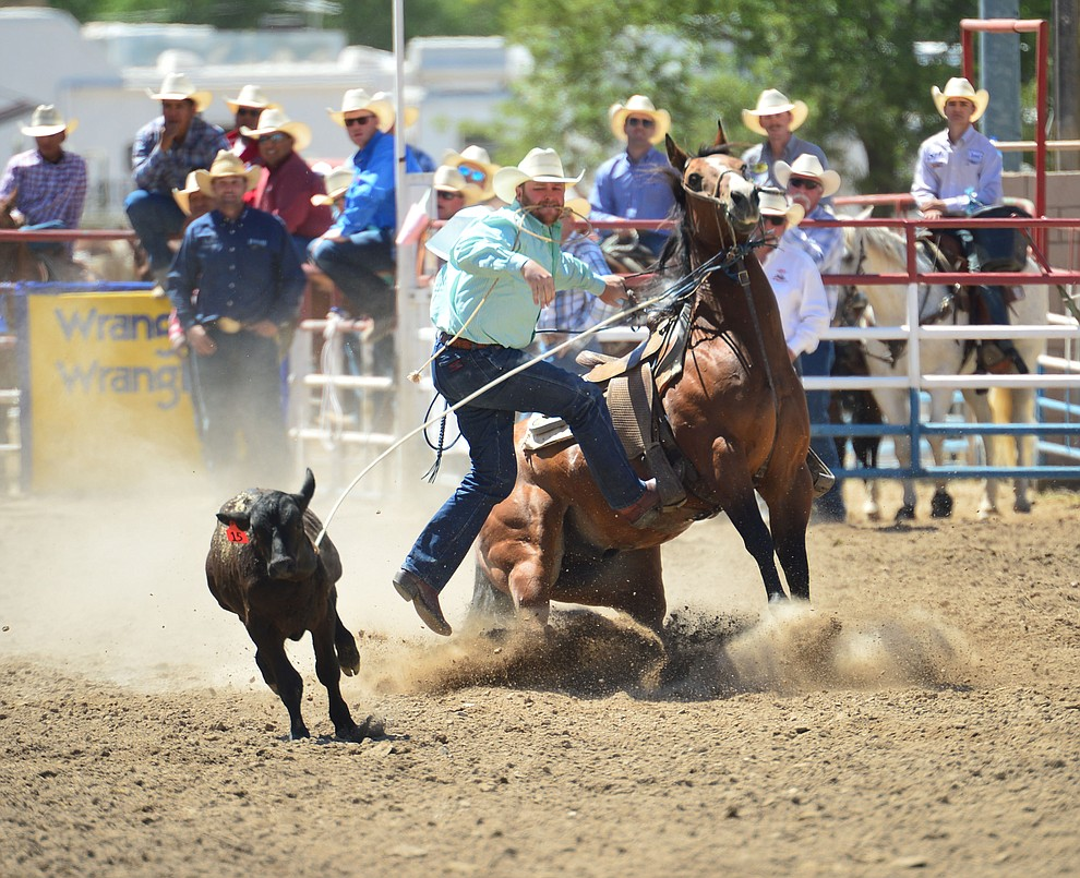 Blake Ash runs 10.4 seconds in the tie down roping during the 6th performance of the Prescott Frontier Days Rodeo Saturday afternoon July 6, 2019.  (Les Stukenberg/Courier)