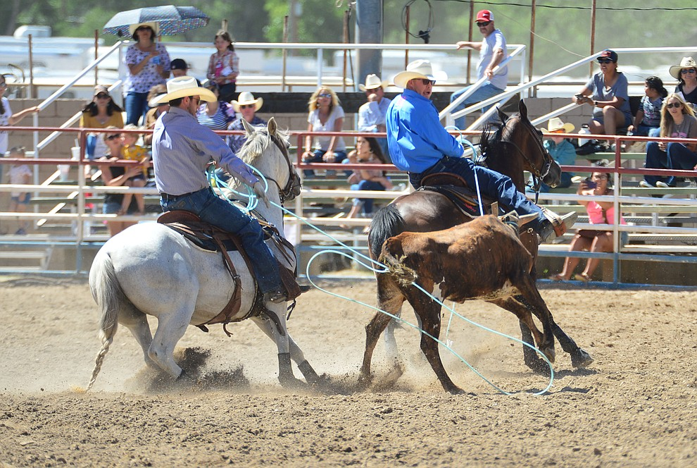 Doyle Hoskins and Morgan McVay have a 7 second run in the team roping during the 6th performance of the Prescott Frontier Days Rodeo Saturday afternoon July 6, 2019.  (Les Stukenberg/Courier)