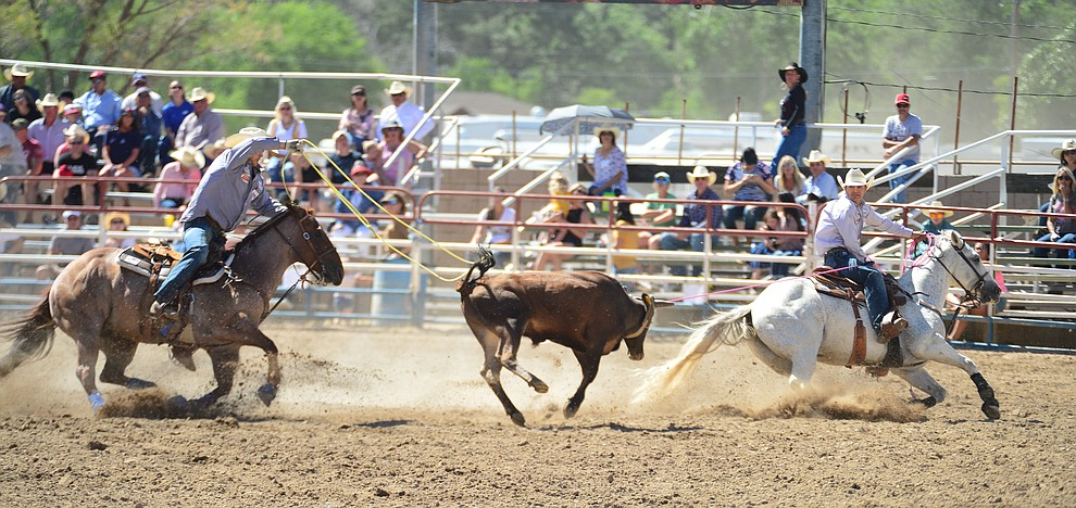 Britt and Jake Smith have a 6.4 second run in the team roping during the 6th performance of the Prescott Frontier Days Rodeo Saturday afternoon July 6, 2019.  (Les Stukenberg/Courier)