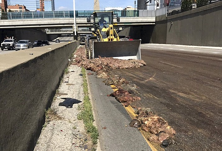 In this Thursday, July 11, 2019 photo, provided by the Missouri Department of Transportation, Kansas City District, a person operates a bulldozer as it cleans up after a tractor-trailer hauling pig intestine dumped its load across a downtown highway in Kansas City, Mo. (Missouri Department of Transportation, Kansas City District via AP)