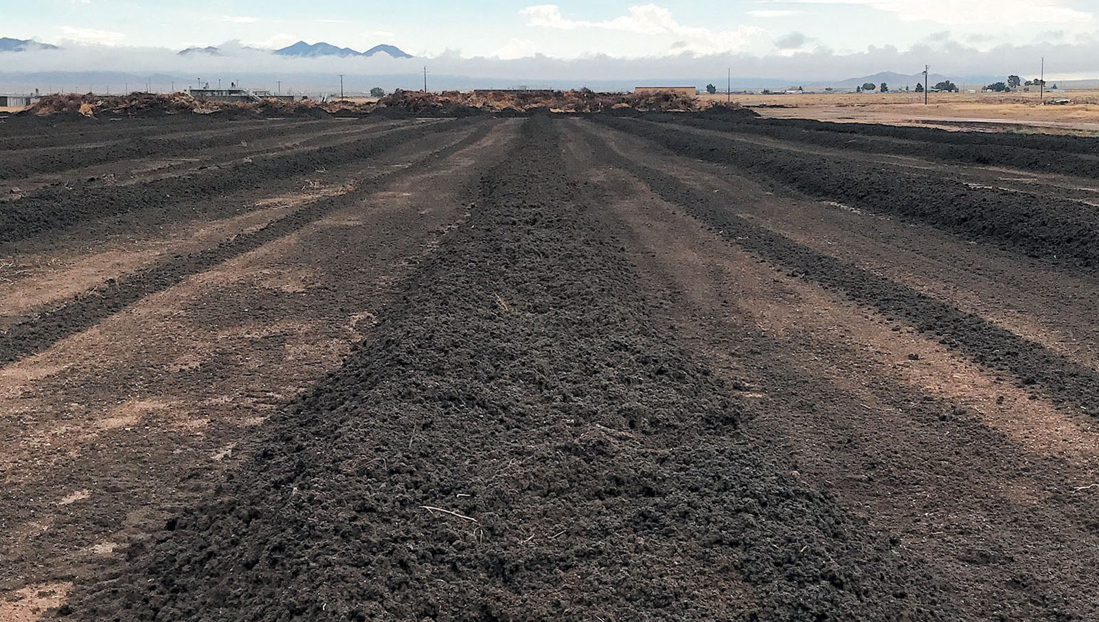 Clean City Commission addresses composting in Kingman