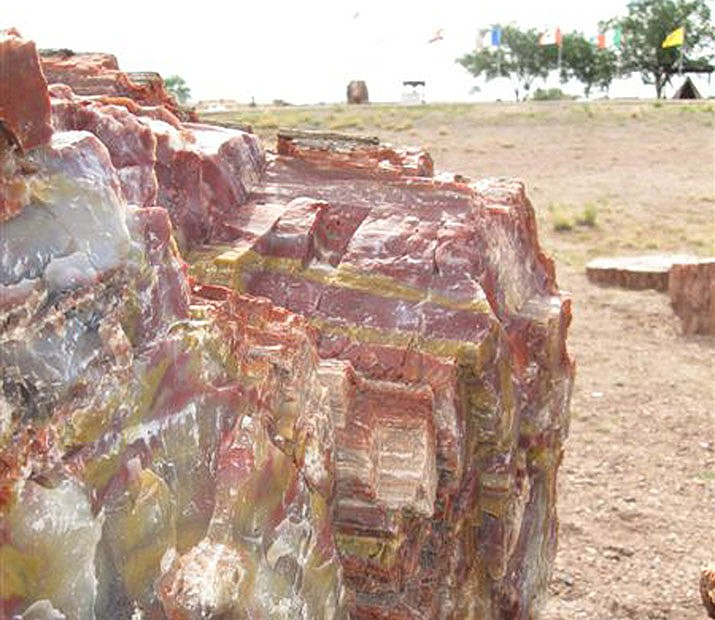 This file image taken July 8, 2009, shows a rainbow-colored piece of petrified wood outside a gift shop in Holbrook. (Felicia Fonseca/AP)