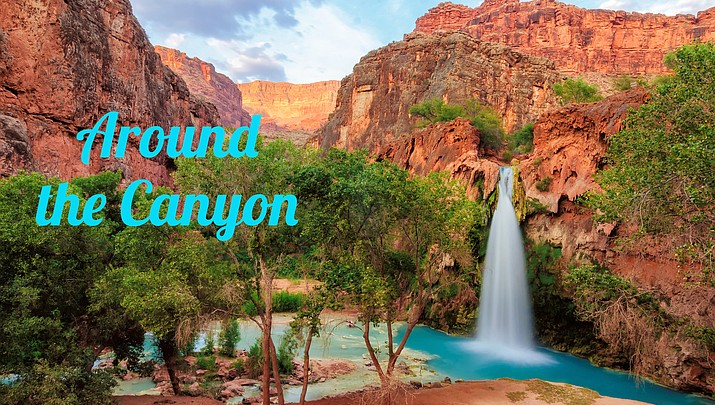 Around the Canyon: Week of Aug. 7