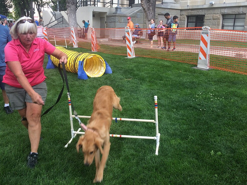 Karen Nauman taking her dog, Riley, through the agility course at the Woof Down Lunchy event at courthouse plaza Saturday, Aug. 3. (Jason Wheeler/Courier)
