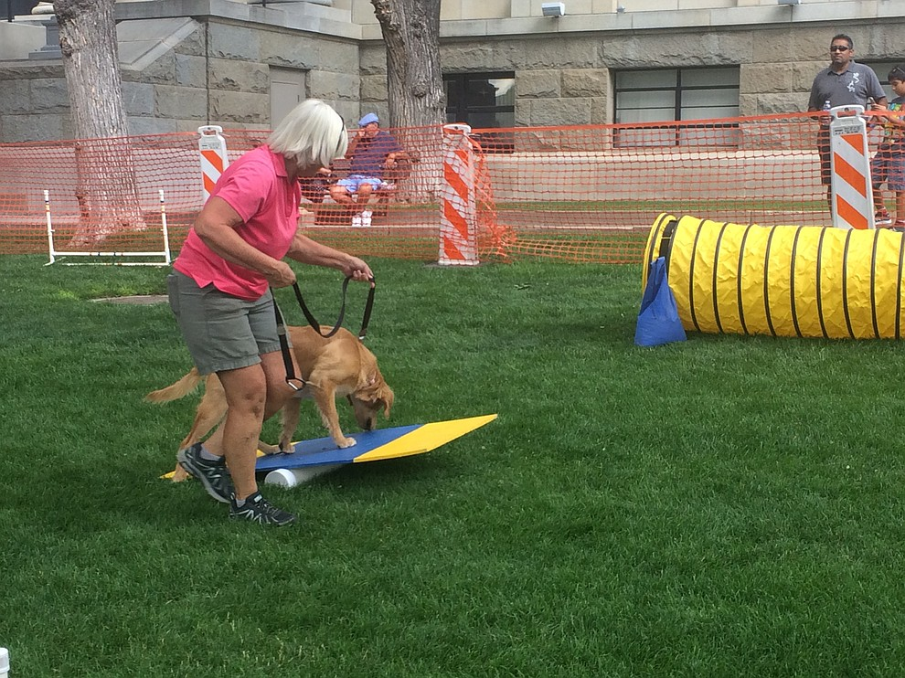 Karen Nauman takes her dog Riley through the agility course at the Woof Down Lunch event at courthouse plaza Saturday, Aug. 3. (Jason Wheeler/Courier)